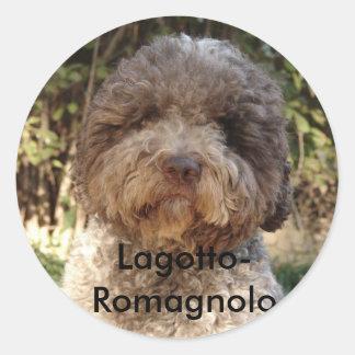 autocollant, Lagotto-Romagnolo Round Sticker