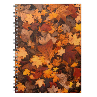 Autum Leaves Spiral Notebook