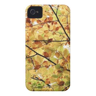 AUTUM LEAVES WALLPAPER iPhone 4 CASES