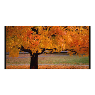 autumn (1) customized photo card