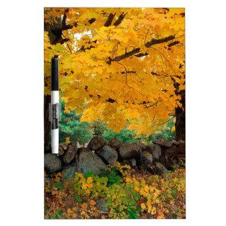Autumn A Golden Season In New England Dry-Erase Board