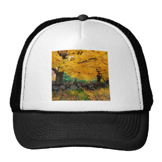 Autumn A Golden Season In New England Trucker Hat