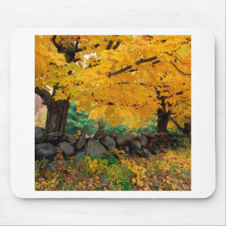 Autumn A Golden Season In New England Mouse Pad