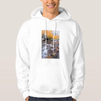 Autumn along Bishop Creek, CA Hoodie