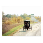 Autumn Amish Horse and Buggy Postcard