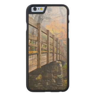 Autumn Appalachian Hiking Trail Carved® Maple iPhone 6 Slim Case