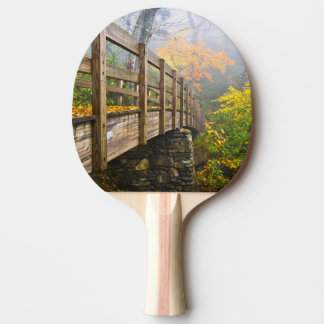 Autumn Appalachian Hiking Trail Ping Pong Paddle