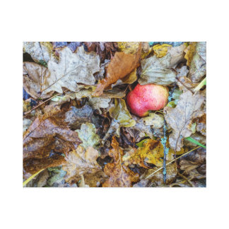 Autumn apple in leaves canvas print