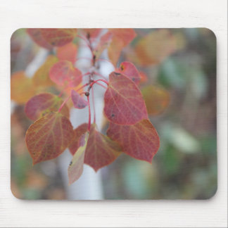 Autumn Aspen Leaves Two Mouse Pad