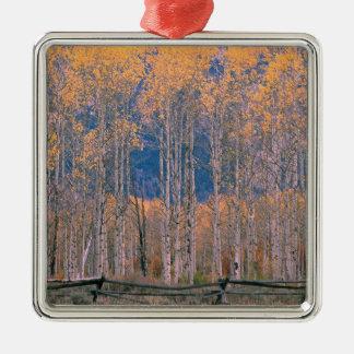 Autumn Aspen Splendor Jackson Hole Wyoming Christmas Tree Ornament