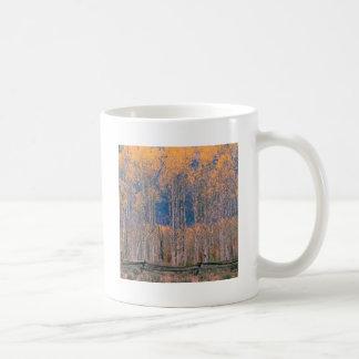 Autumn Aspen Splendor Jackson Hole Wyoming Mugs