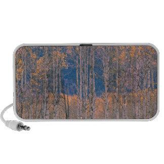 Autumn Aspen Splendor Jackson Hole Wyoming Laptop Speaker