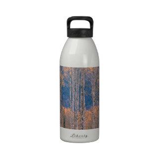 Autumn Aspen Splendor Jackson Hole Wyoming Drinking Bottles