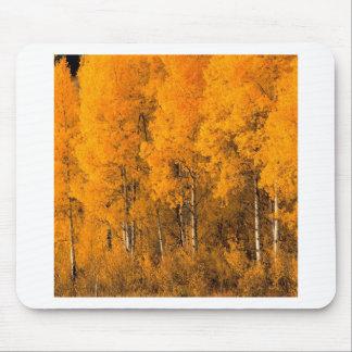 Autumn Aspen Trees Montana Mousepads