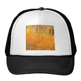 Autumn Aspens And Windblown Grasses Idaho Trucker Hats