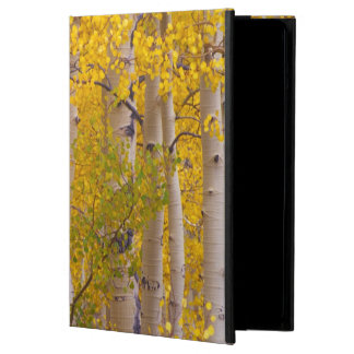 Autumn aspens in Kebler Pass in Colorado Cover For iPad Air