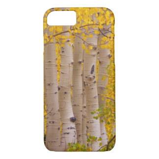 Autumn aspens in Kebler Pass in Colorado iPhone 8/7 Case