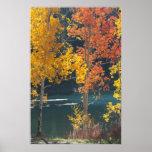 Autumn at Bear Lake Poster
