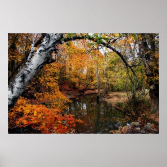 Autumn At Petrifying Springs Poster