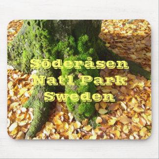Autumn At Söderåsen National Park Mouse Pad