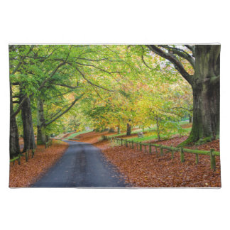 Autumn Avenue Placemat