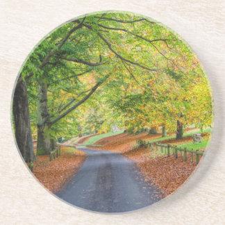 Autumn Avenue - Plaing Cards Coaster