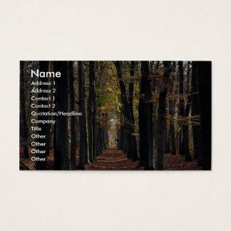 Autumn beech wood, rural Netherlands in Europe Business Card