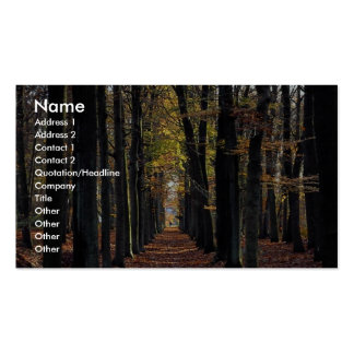 Autumn beech wood, rural Netherlands in Europe Pack Of Standard Business Cards