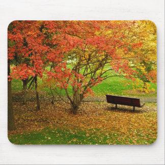 Autumn Bench Mouse Mat