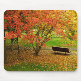 Autumn Bench Mouse Pad
