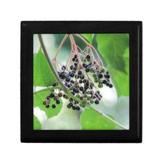 autumn berries gift box