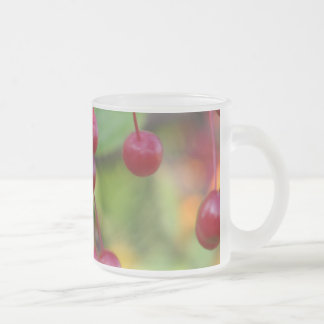 Autumn berries 10 oz frosted glass coffee mug