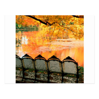 Autumn Best Seat In House Louisville Kentucky Postcard