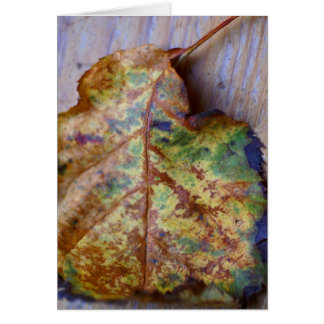 Autumn birthday card with colorful leaf