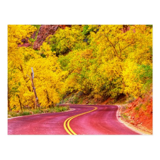 Autumn Boulevard Postcard