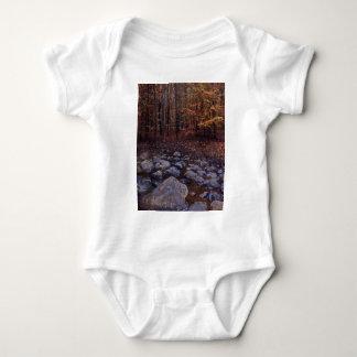 Autumn Brook Tee Shirts