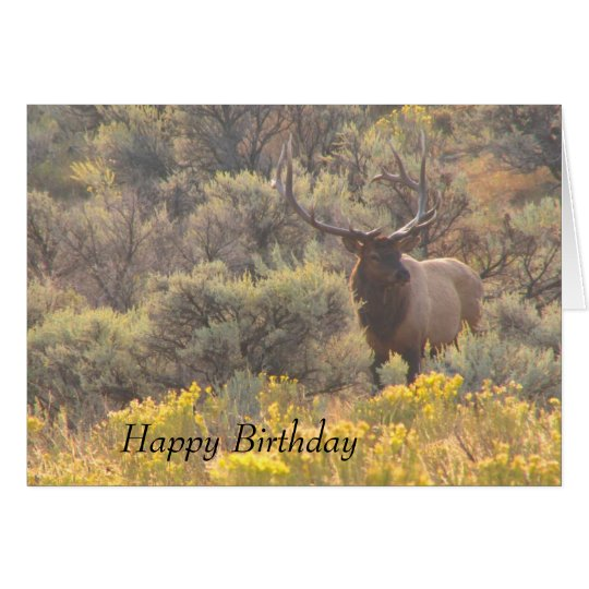 Autumn Bull Elk Custom Happy Birthday Card