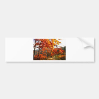 autumn bumper sticker