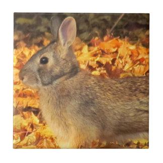 Autumn Bunny Tile