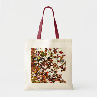 Autumn candy tote bag