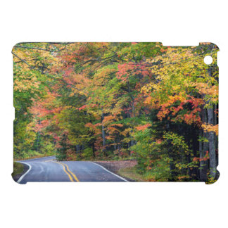 Autumn Canopy Of Color Along Highway 41 2 Case For The iPad Mini