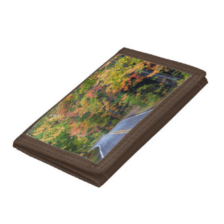 Autumn Canopy Of Color Along Highway 41 2 Tri-fold Wallet