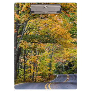 Autumn Canopy Of Color Along Highway 41 Clipboard