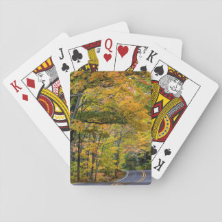 Autumn Canopy Of Color Along Highway 41 Playing Cards