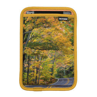 Autumn Canopy Of Color Along Highway 41 Sleeve For iPad Mini