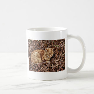 Autumn Cat Basic White Mug
