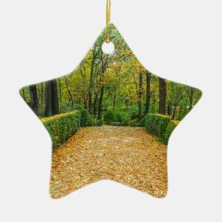 Autumn Ceramic Star Decoration