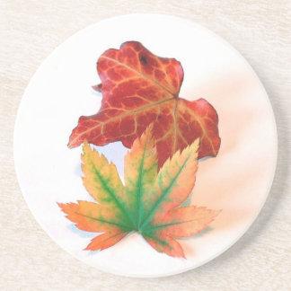 Autumn Drink Coasters