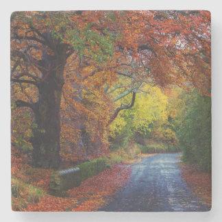 Autumn coaster stone coaster
