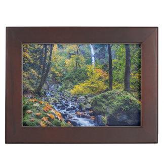 Autumn Color Along Starvation Creek Falls 2 Keepsake Box